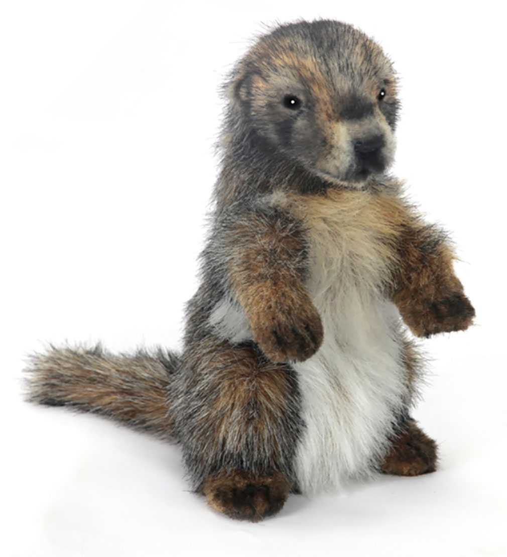 Murmeltier originalgetreu 23cm Marmot Hansa 6754