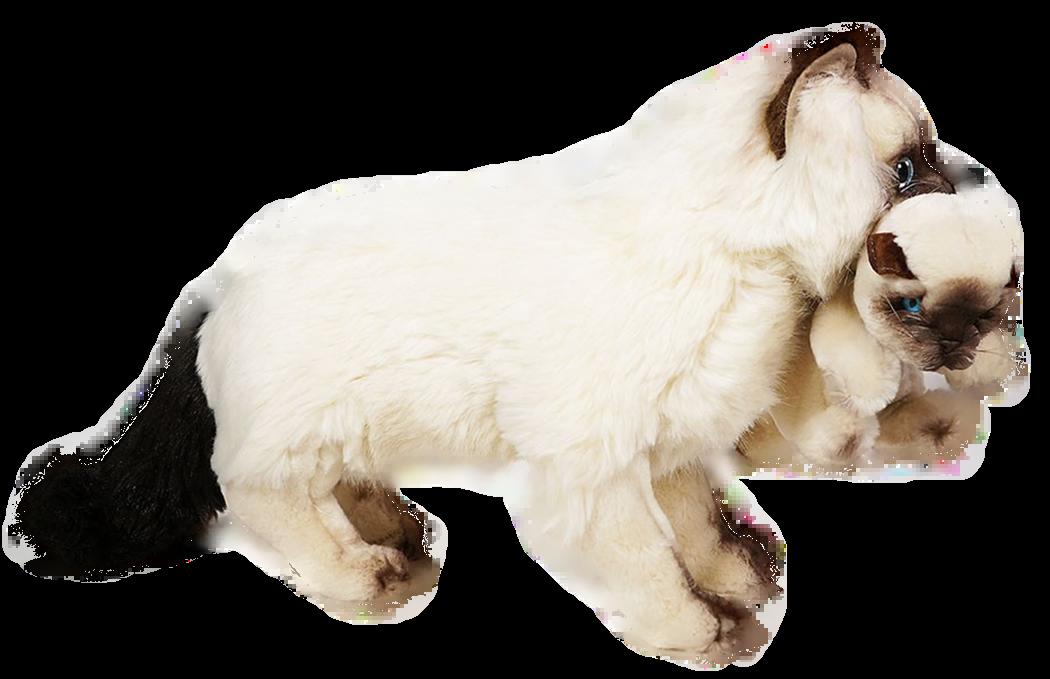 Willkommen in der Piutrè Animal Collection, der besten Sammlung realistischer Plüschtiere der Welt. Die Tiere der Piutrè-Kollektion wurden ursprünglich in Italien von Spielzeugmeistern entworfen und reproduzieren getreu ihre realen Gegenstücke in Form, Farbe, Größe und Ausdruck. Jedes Stück wird in Italien vollständig von Hand genäht, geformt und veredelt, wobei die besten in Europa hergestellten Materialien verwendet werden. Das Ergebnis ist ein wunderschönes Stofftier, das gerne ein Leben lang aufbewahrt wird. The world's most realistic plush animals.... perfect .....and most of all Italian !