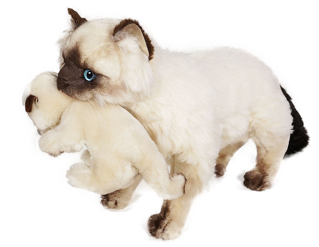 Piutre Colourpoint Katze mit Jungetier stehend Plüsh Stofftier Model 2359 (60 cm) Handgemacht in Italien