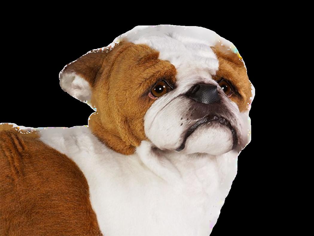 Piutre Bulldog stehend Plüsh Stofftier Model 2270 (62 cm) Handgemacht in Italien